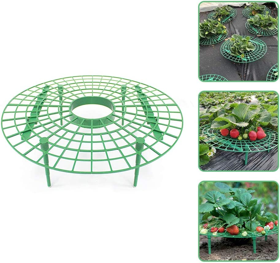 Details about  /1PCS Round Strawberry Supports Fruit Plant Strawberry Growing Far From The Soil
