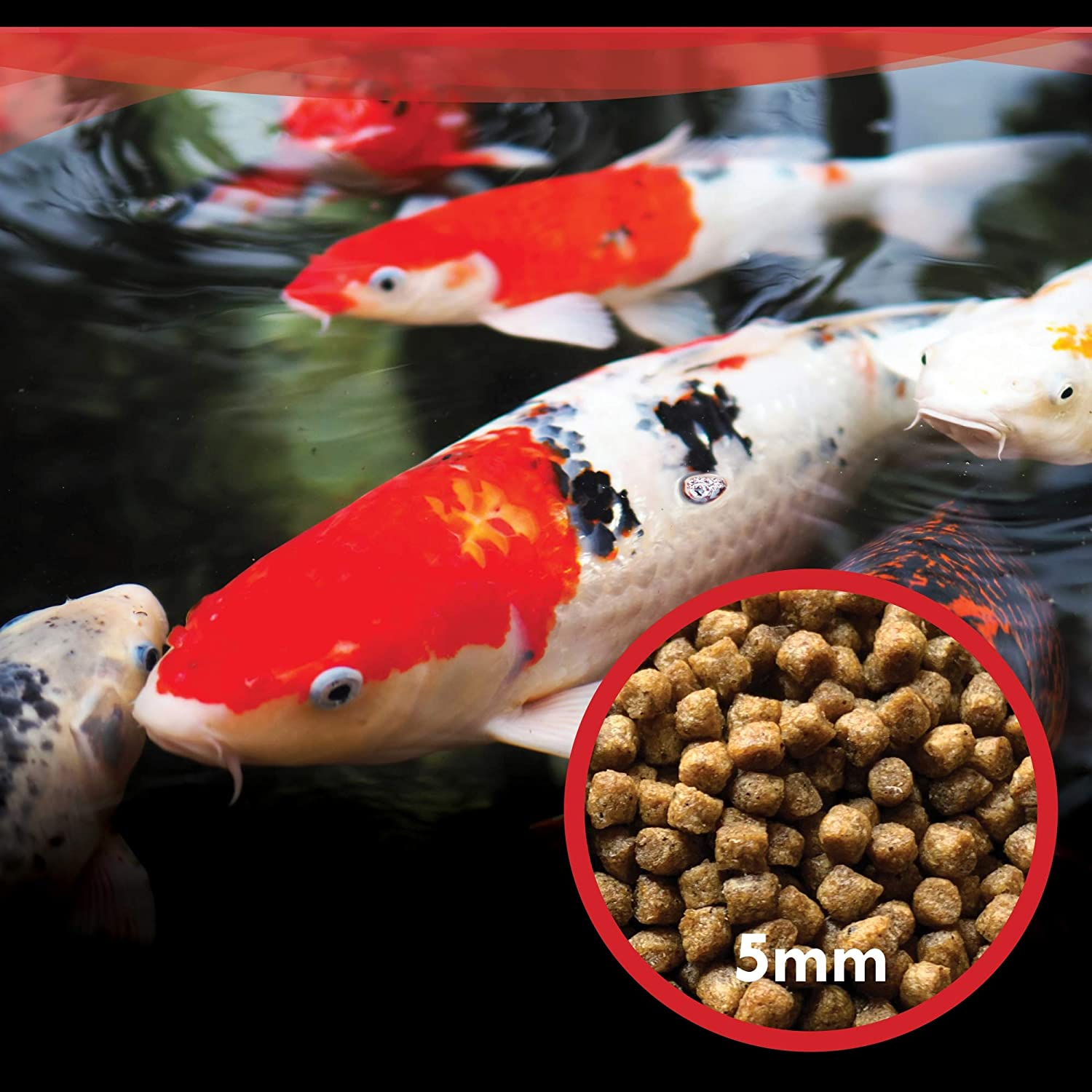 HALF OFF PONDS Show & Grow with Color Enhancing and Protein, Grow Pro with High-Protein Growth, and All Seasons Nourishing Koi and Goldfish Food Formulas