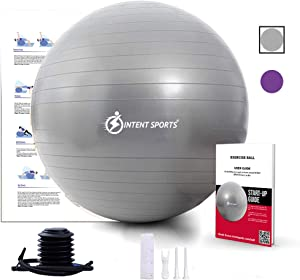 INTENT SPORTS Exercise Ball Chair – Stability Yoga Ball with Inflation Pump, Fitness Ball for Home Gym, Office, Birthday Ball Improves Back Pain, Core, Posture & Balance, Exercise Videos (65 cm)