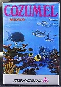 Cozumel Mexico Refrigerator Magnet. Mexicana Air