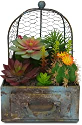 ReLive Succulent Designs; Farmhouse style Metal Drawer planter arranged with Succulents