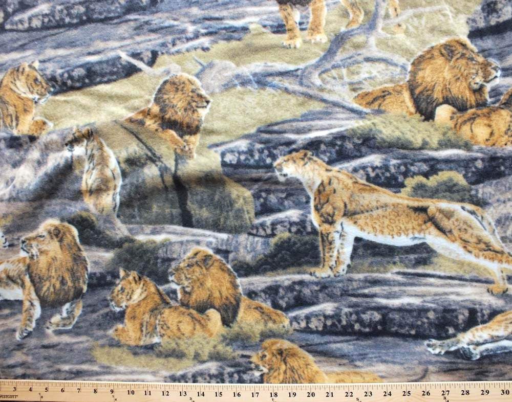 VelvaFleece Lion Pride Lions Lioness Fleece Fabric Print by the Yard a32616b by Field's Fabrics   B00YW04PI2