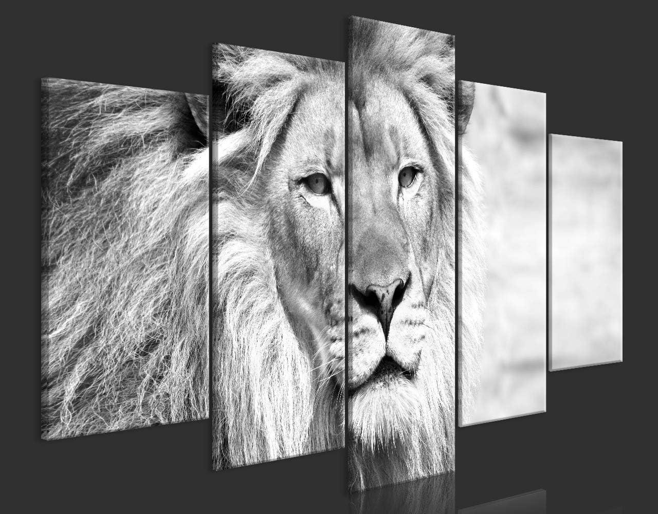 Cuadro en Lienzo Le/ón 100x50 cm Impresi/ón de 5 Piezas Material Tejido no Tejido Impresi/ón Art/ística Imagen Gr/áfica Decoracion de Pared Colorido Animales g-B-0075-b-n murando