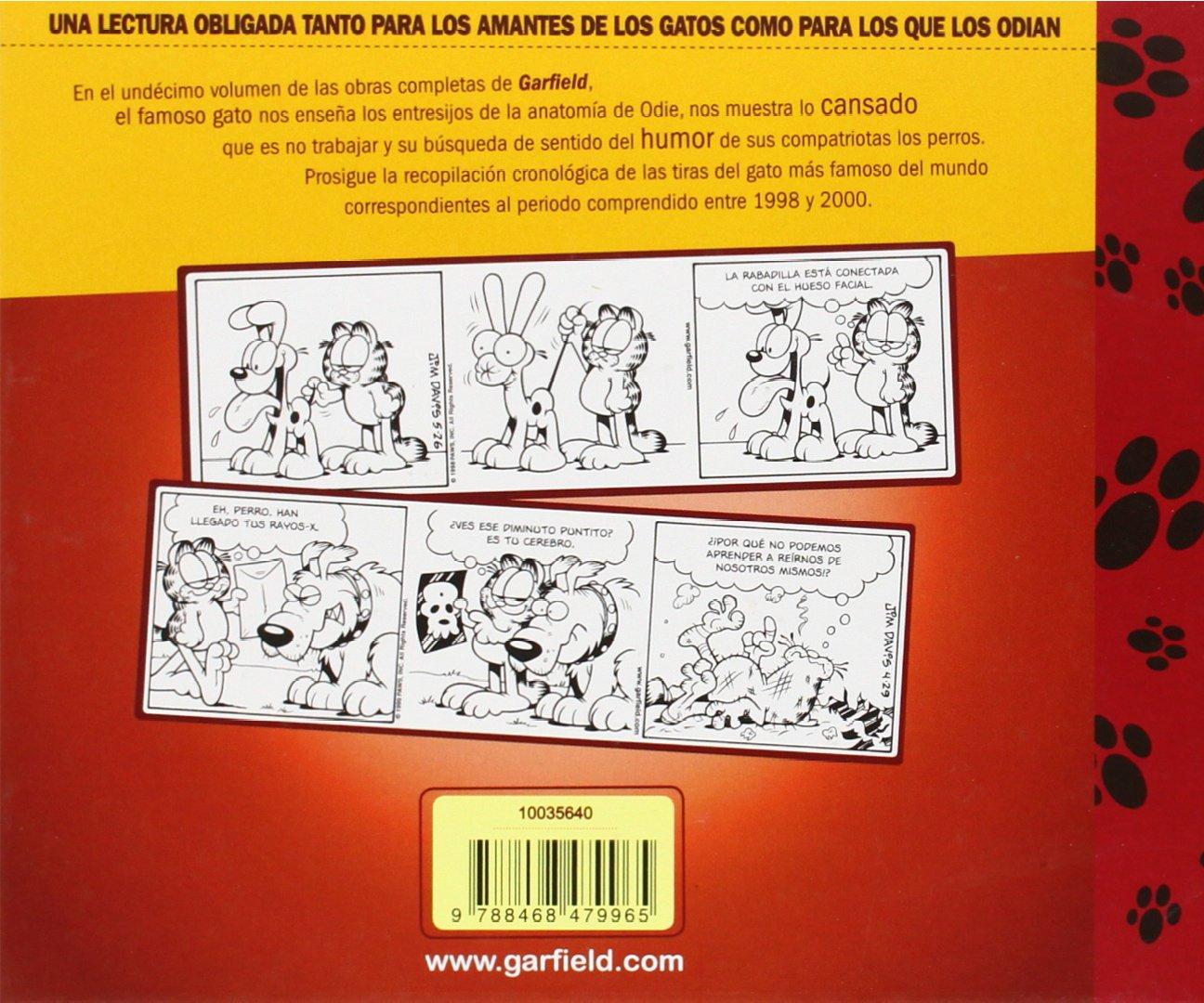 Garfield 1998-2000 nº 11/20 (Cómics Clásicos): Amazon.es: Jim Davis: Libros