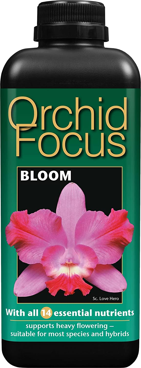 Growth Technology Ltd Orchid Focus Bloom 1 Litre GTOFB1