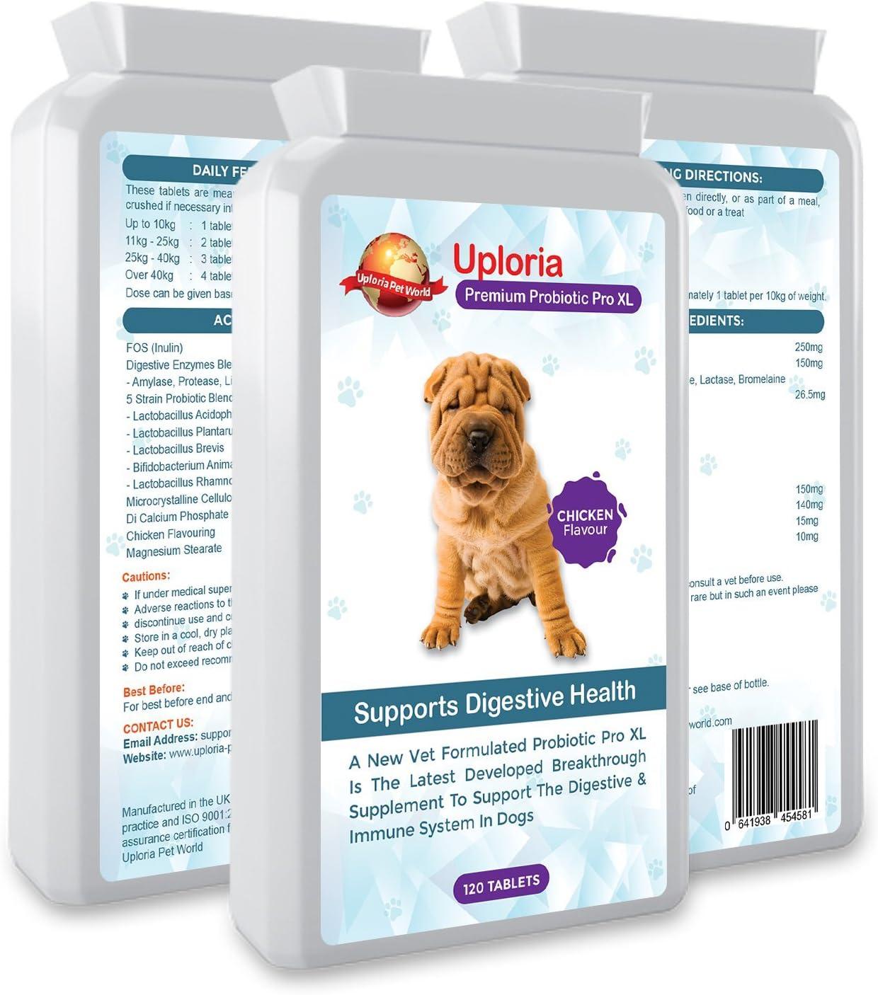 Uploria Pet World Suplemento Probiótico para Estómagos Sensibles De Perros | 120 Comprimidos con Sabor A Pollo | Es También Un Suplemento para El Sistema Inmunológico: Amazon.es: Productos para mascotas