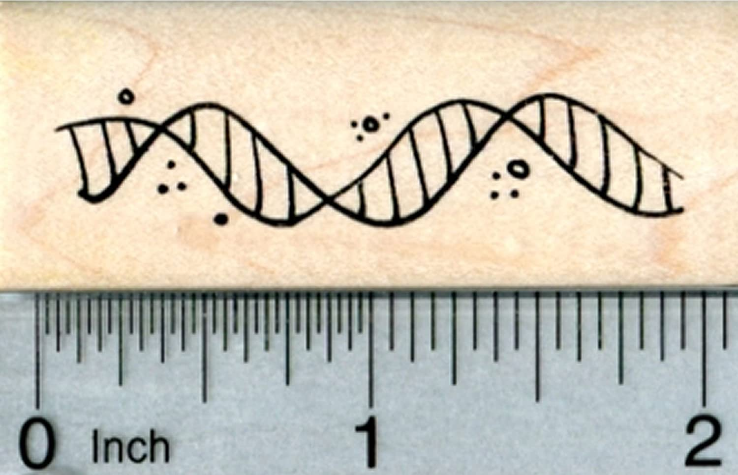 Biological Science Series DNA Helix Rubber Stamp