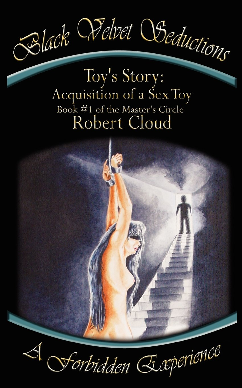 Toy's Story: Acquisition of a Sex Toy pdf