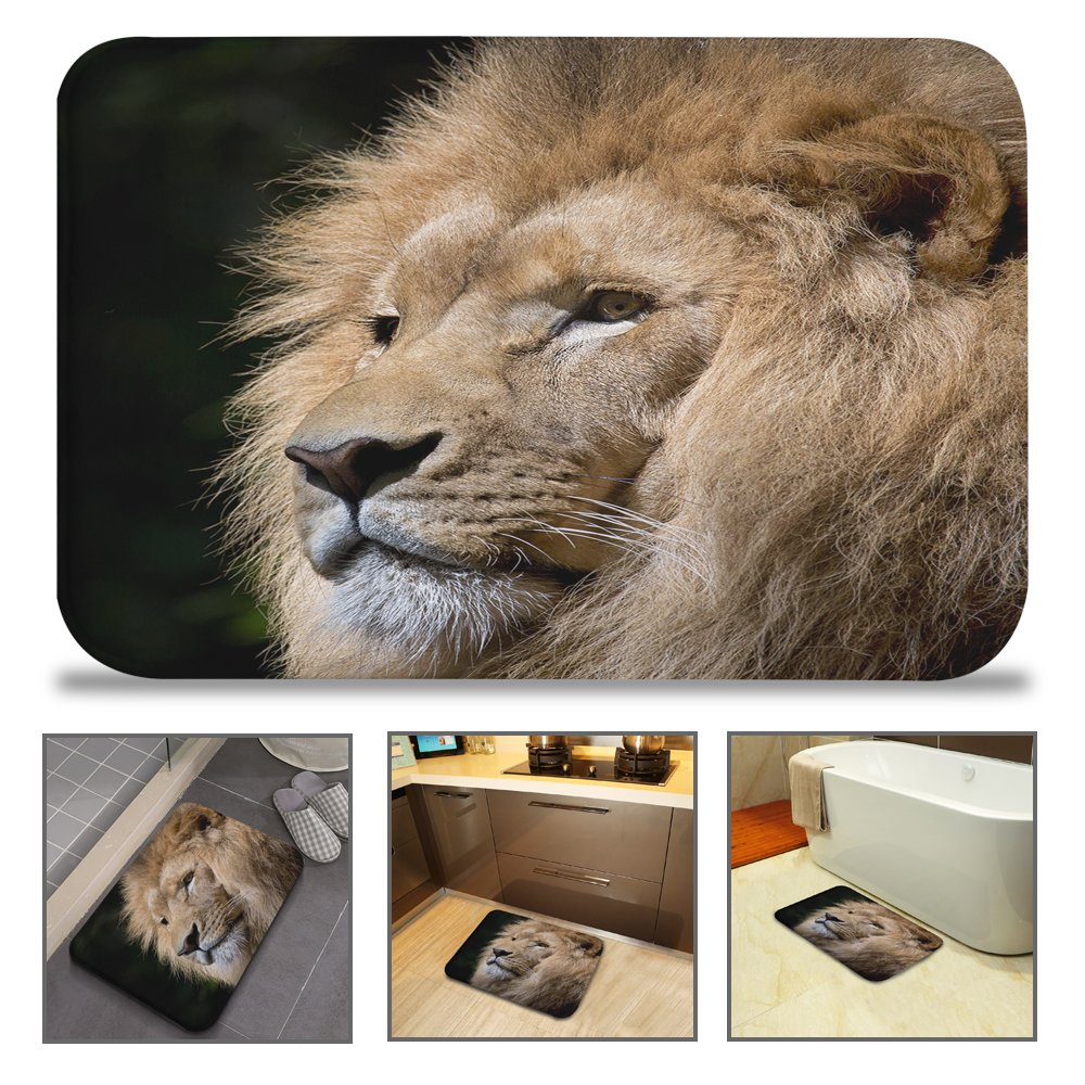 QIYI Bath Mat Rug Super Soft Non-Slip Machine Washable Quickly Drying Antibacterial, For Office Door Mat, Kitchen Dining Living Hallway Bathroom 16 W x 24 L (40 x 60 CM) -Pensive King Lion HY 723247588987