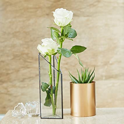 Amazon.com & Amazon.com: PuTwo Flower Vase Black Glass Vase Wall Vase with Hook ...