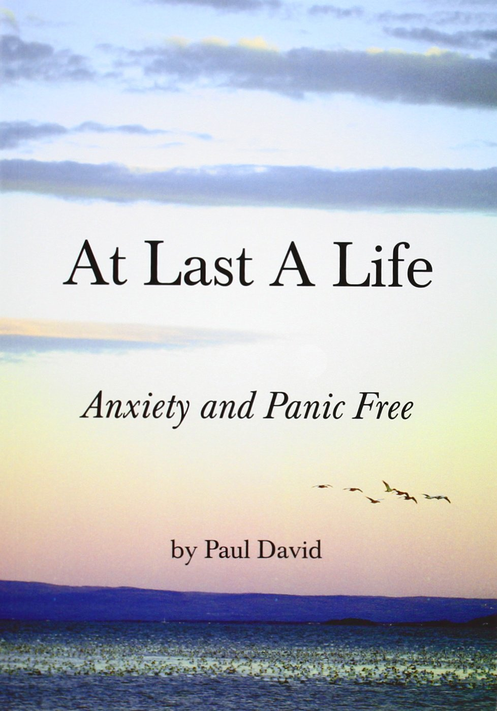 At Last A Life Book