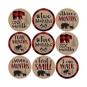 Amazon.com: 16 pegatinas con diseño de oso de bosque para ...