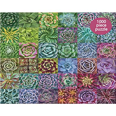 Fullfun Succulent Plants Puzzle 1000 Piece Adult Children Puzzle Interesting Toy Paper Assembed Jigsaw 29.53 x 19.69inch Education Toy: Toys & Games