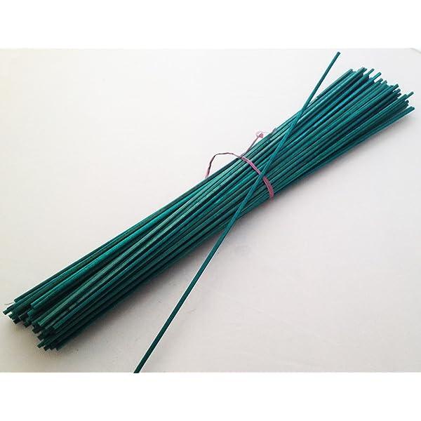 Nutleys - Varillas para Plantar (Verde) 20 Piezas: Amazon.es: Jardín