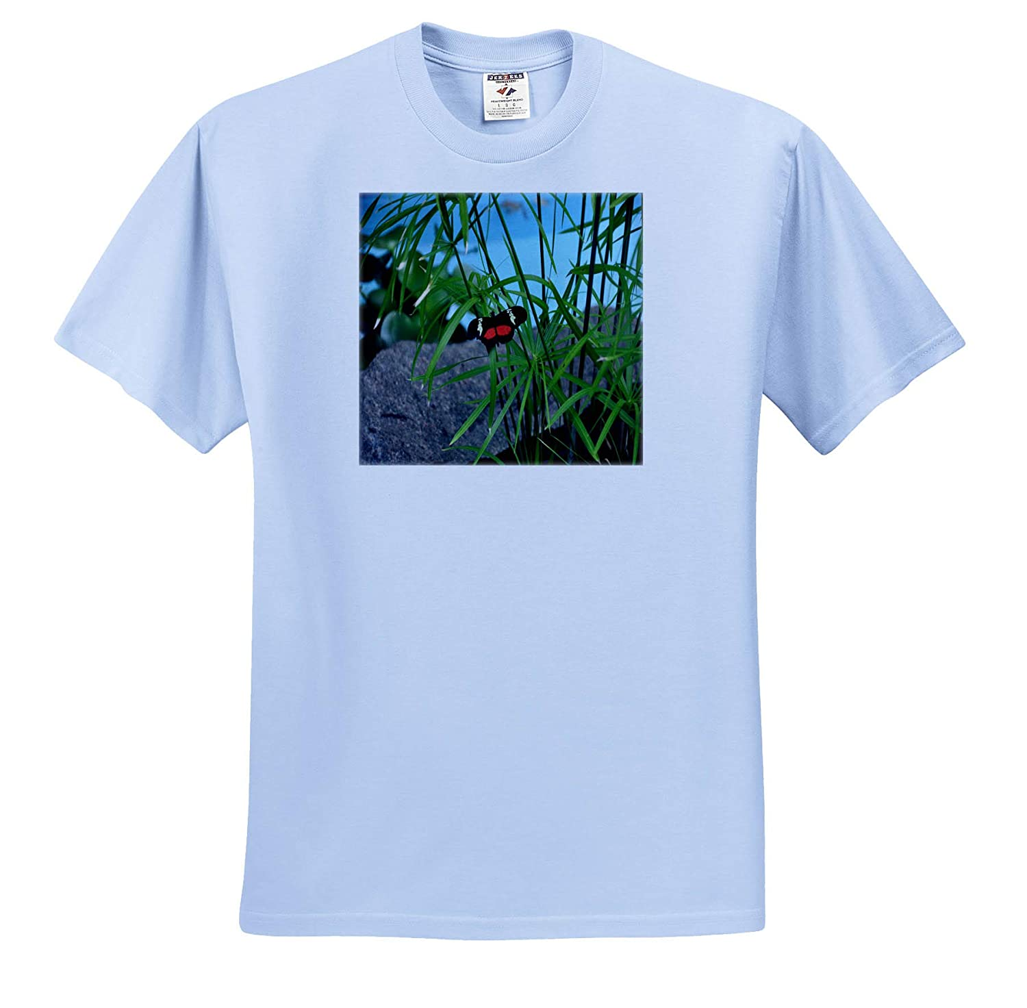 3dRose Dreamscapes by Leslie Insects Adult T-Shirt XL Red and White Butterfly on Green Spikes Black ts/_314287
