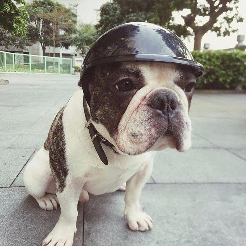 Nero UEETEK Pet Dog Helmet Dog Motorcycles Bike Protezione Solare Antipioggia Taglia S