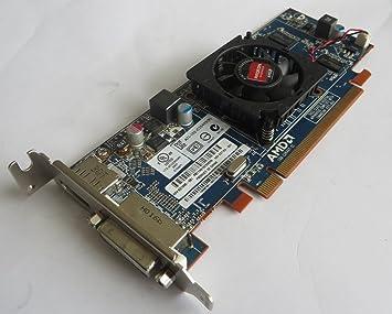 HP qm229aa Radeon HD 6450 - Tarjeta gráfica 625 MHz Core ...