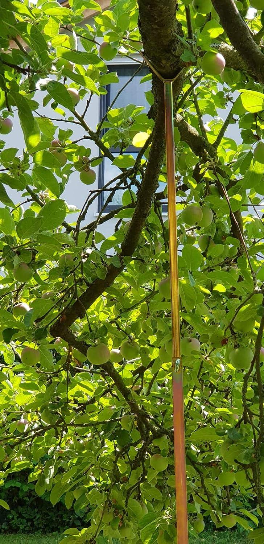 Kevin Schau - Soporte telescópico para Ramas de árboles frutales ...