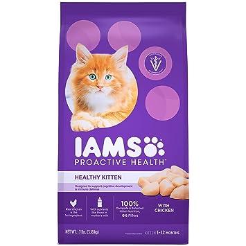 Amazon Iams Proactive Health Healthy Kitten Dry Cat Food With