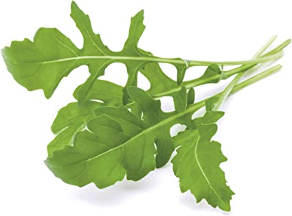 Emsa 3 Cápsulas Experimiental Click & Grow, semillas apta para ...