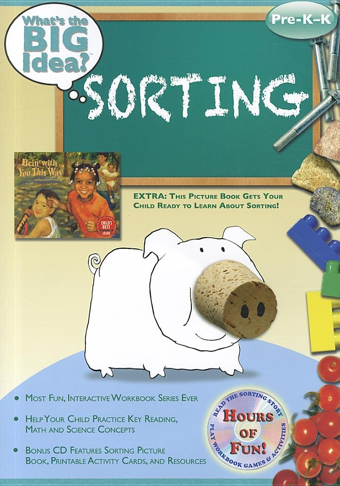 Read Online Sorting: What's the BIG Idea? Workbook ebook