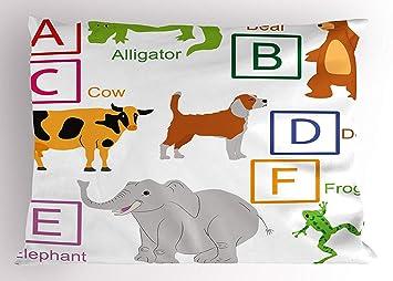 Amazon Com Emiqlandg Educational Pillow Sham Alphabet