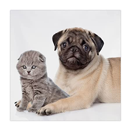 Polyester Square Tableclothpugcute Young Pets Kitten And Puppy Pug
