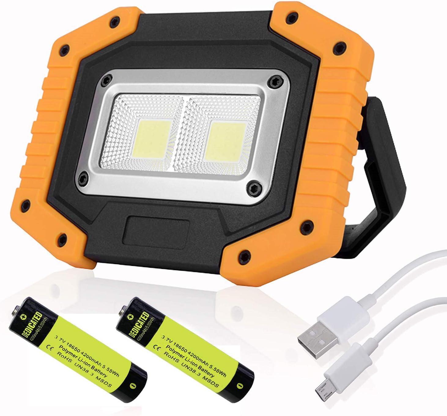 LED FLASHLIGHT AND COB FLOODLIGHT