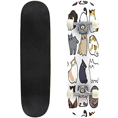 Novelty Funny 31 inch Skateboard Cats Cats Cats Complete Longboard Standard Skate Board Double Kick Tricks Skateboards for Kids Boys Girls Youths Beginners : Sports & Outdoors