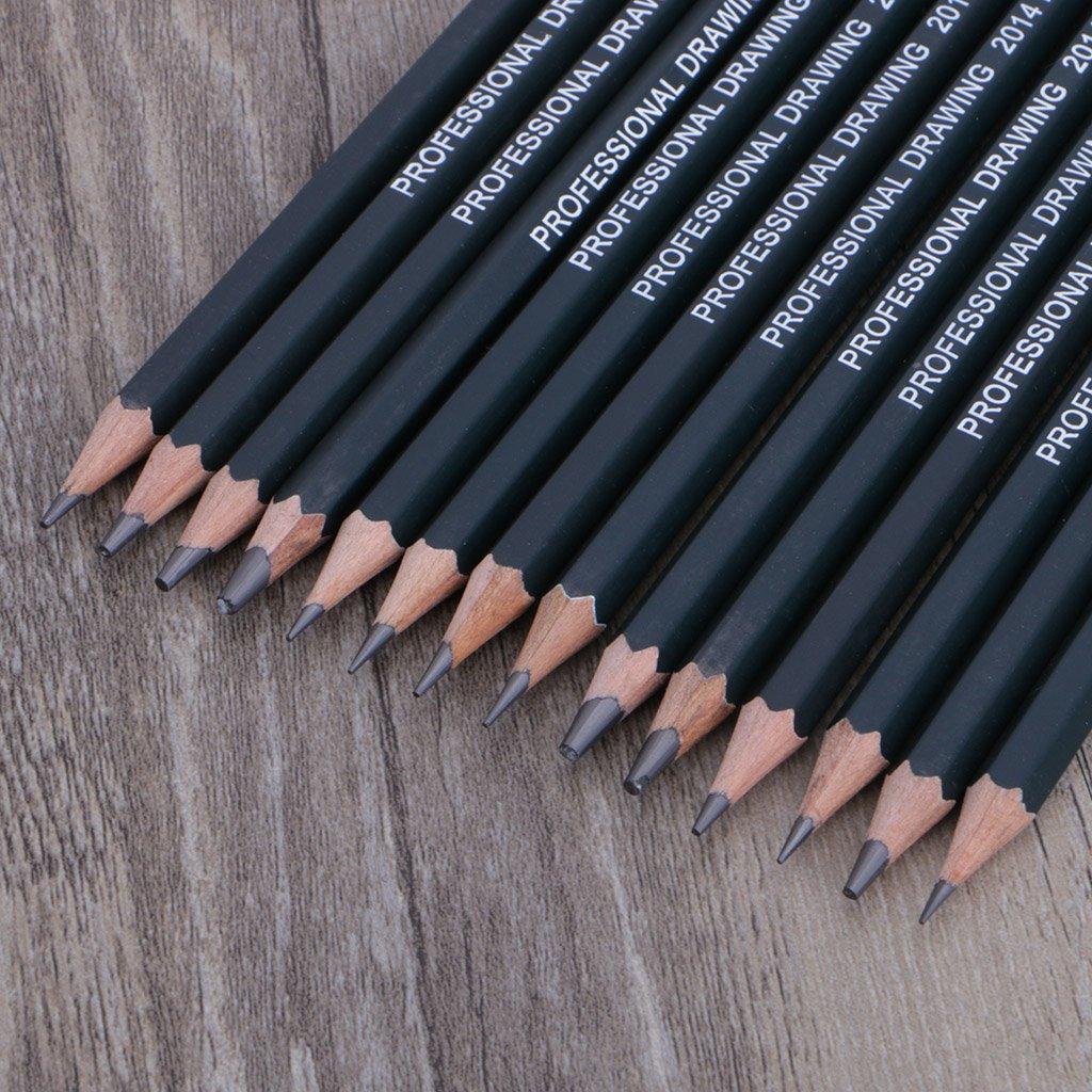 tandou 14pcs disegno professionale Schizzi matita Art ARTISTA artigianato Scuola Forniture Ensemble