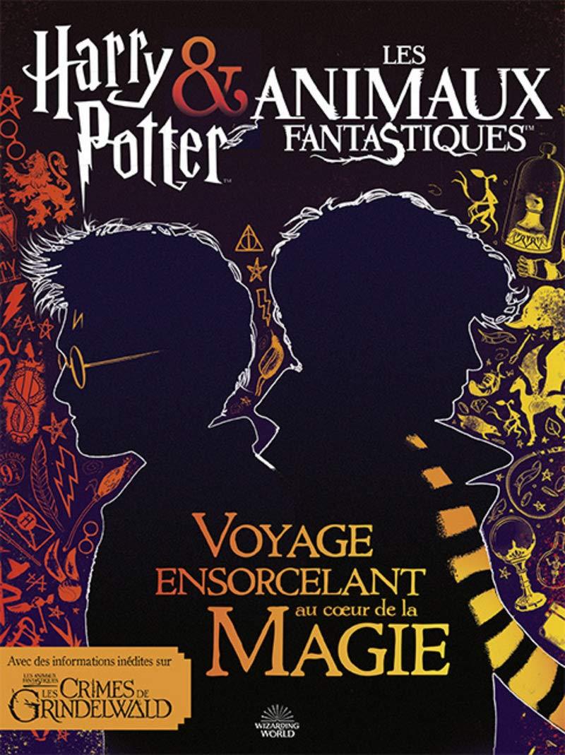 Harry Potter Les Animaux Fantastiques Voyage Ensorcelant