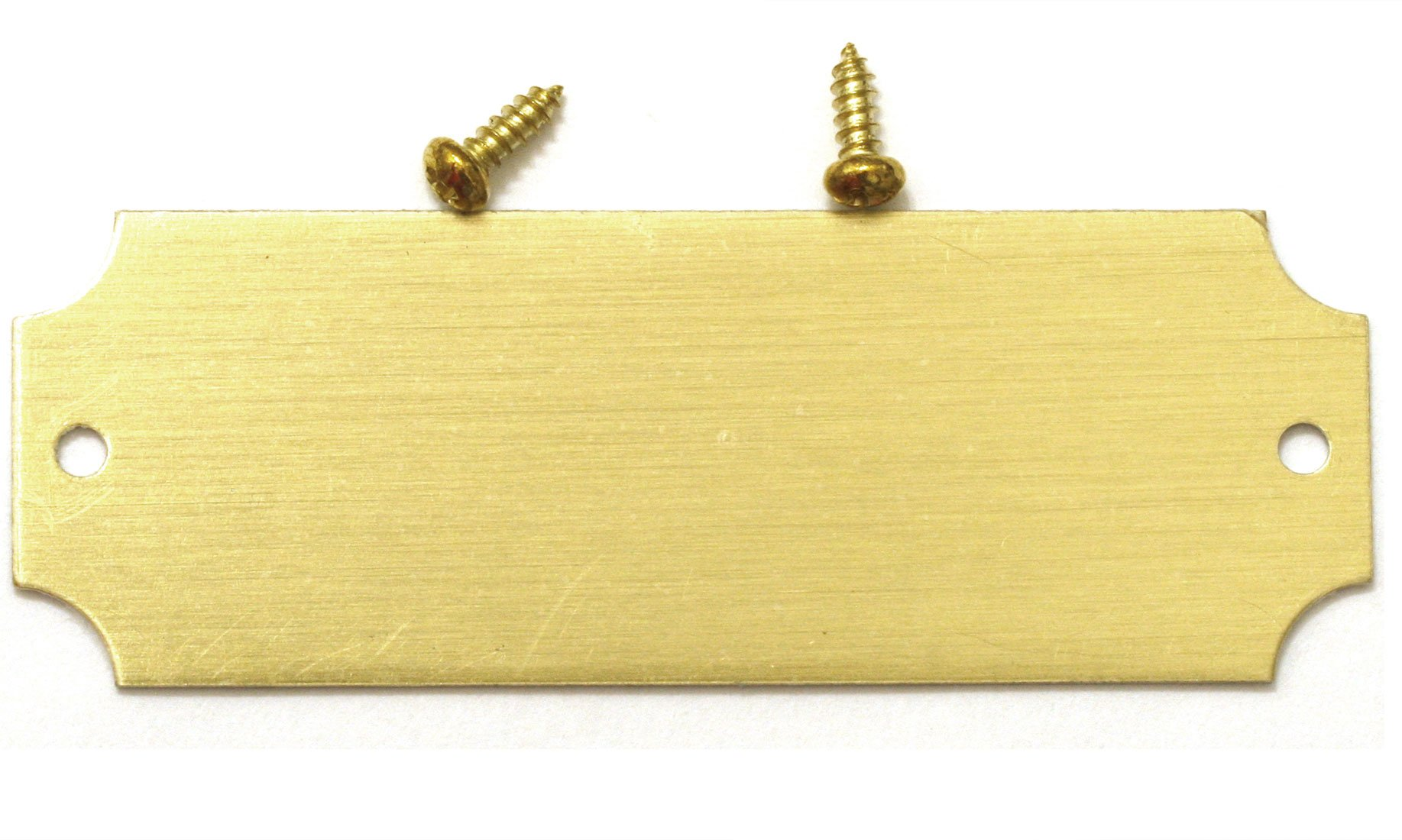 0.875'' H x 2.5'' W, Blank Solid Brass Satin Name Plates, Lacquered Perpetual Plaque Blank Tag, with Screws, Made in USA (50)