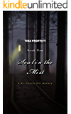 Soul in the Mist: A St. Francis Hill Mystery (St. Francis Hill Mysteries Book 1)