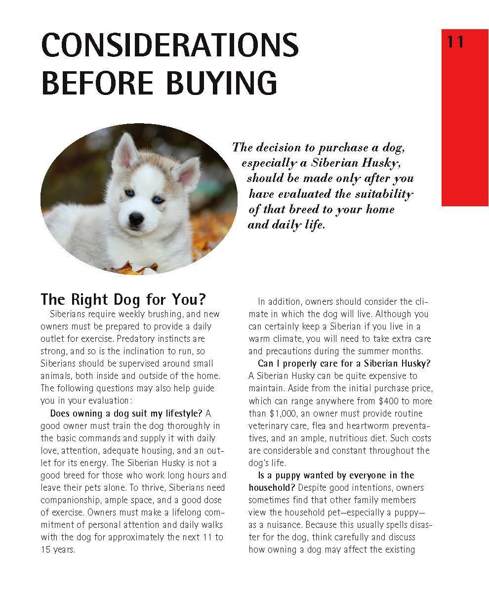 Jual Siberian Huskies Complete Pet Owner S Manual Pets Animal