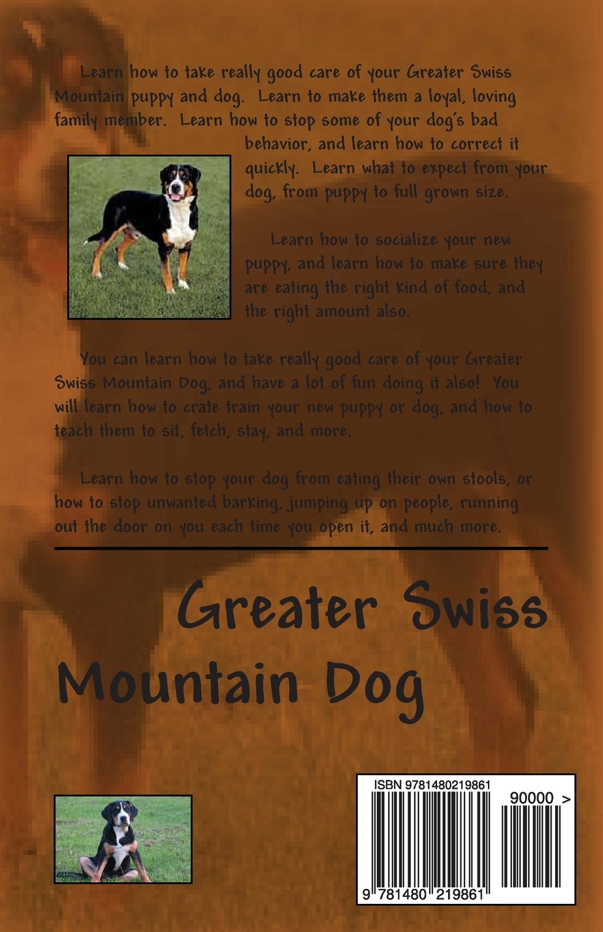 Greater Swiss Mountain Dog Puppy Dog Training Bruce Brownsdale