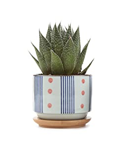 T4U 3 Inch Ceramic Japanese Style Pot White, Serial No.5 Succulent Plant Cactus Planter Flower Container