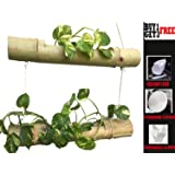 RARE PRODUCTS OOTY 2 Steps Bamboo Hanging Planter with Non-Woven Car Steering and Gear Knob Cover and Disposable Gloves