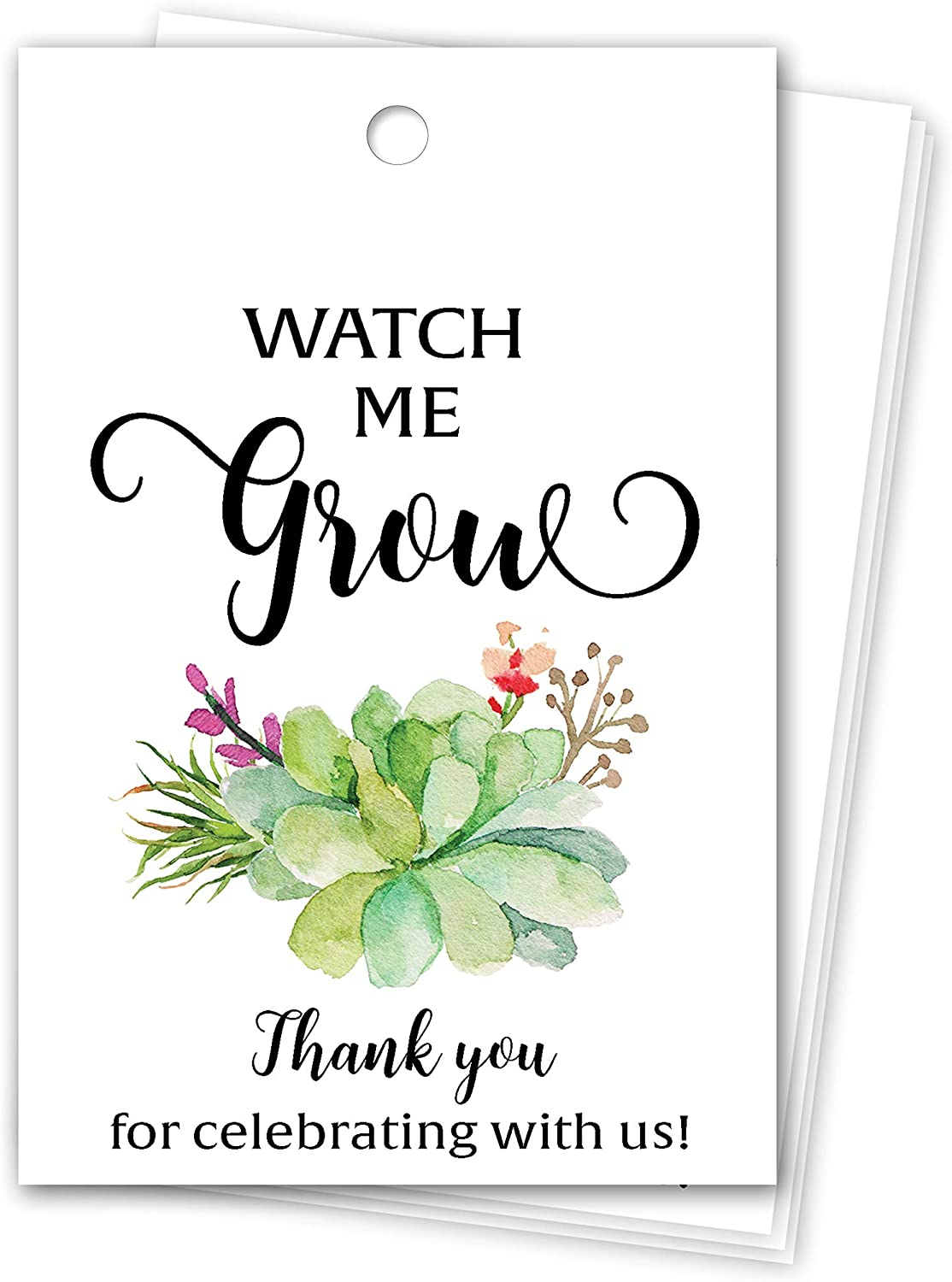 Succulent Watch me Grow Favor Tags— Pack of 25 — Baby Shower Thank You Tags, Watch me Grow Tags for Succulents, Greenery Favors, Seed Bag Favors, Hang Tags, Rustic Tag T300-FT2