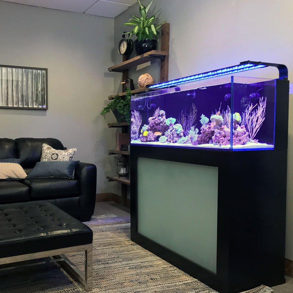 aquariumthat.com