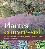 Plantes couvre-sol. Des idées originales pour un jardin plein de couleurs et sans entretien
