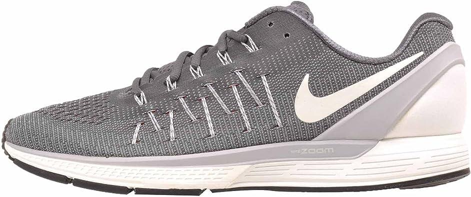Nike 844545-002, Zapatillas de Trail Running para Hombre, Gris (Dark Grey/Summit White/Wolf Grey), 42.5 EU: Amazon.es: Zapatos y complementos