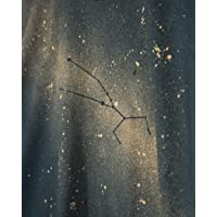 Nueva camiseta hecha a mano de las constelaciones del zodiaco de Tauro para mujer para regalos y todos los días