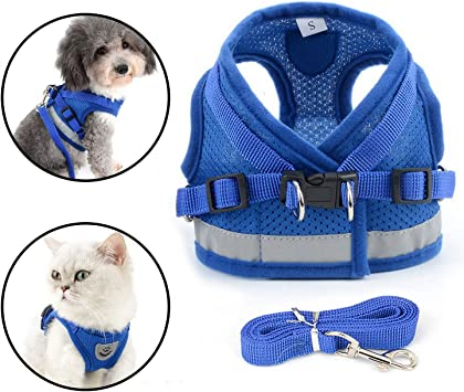 Escape Proof Dog Vest Harnesses for Puppy Small Animals//Cats Easy Fit Dog Collar Medium, Grey-New Mesh Anlitent Soft Mesh No Pull Dog//Cat Harness and Lead Set for Walking