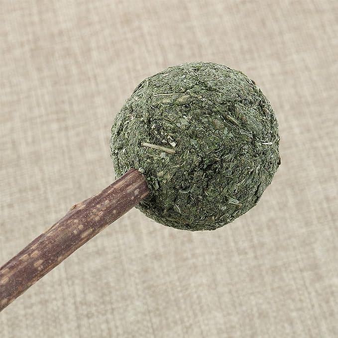 Amazon.com : eDealMax KOTA PET autorizado dientes naturales Fresca hierba gatera comprimido limpieza de Bolas Juguetes Para Gatos : Pet Supplies