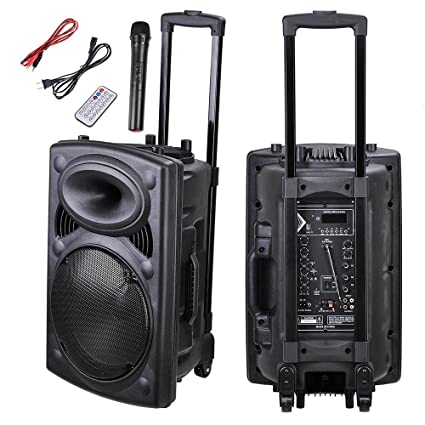 Amazon.com  AW Portable 1200W Active PA Speaker Mic Guitar AMP Bluetooth  USB SD LCD FM Remote w Wireless Microphone  Musical Instruments c8375c50be554