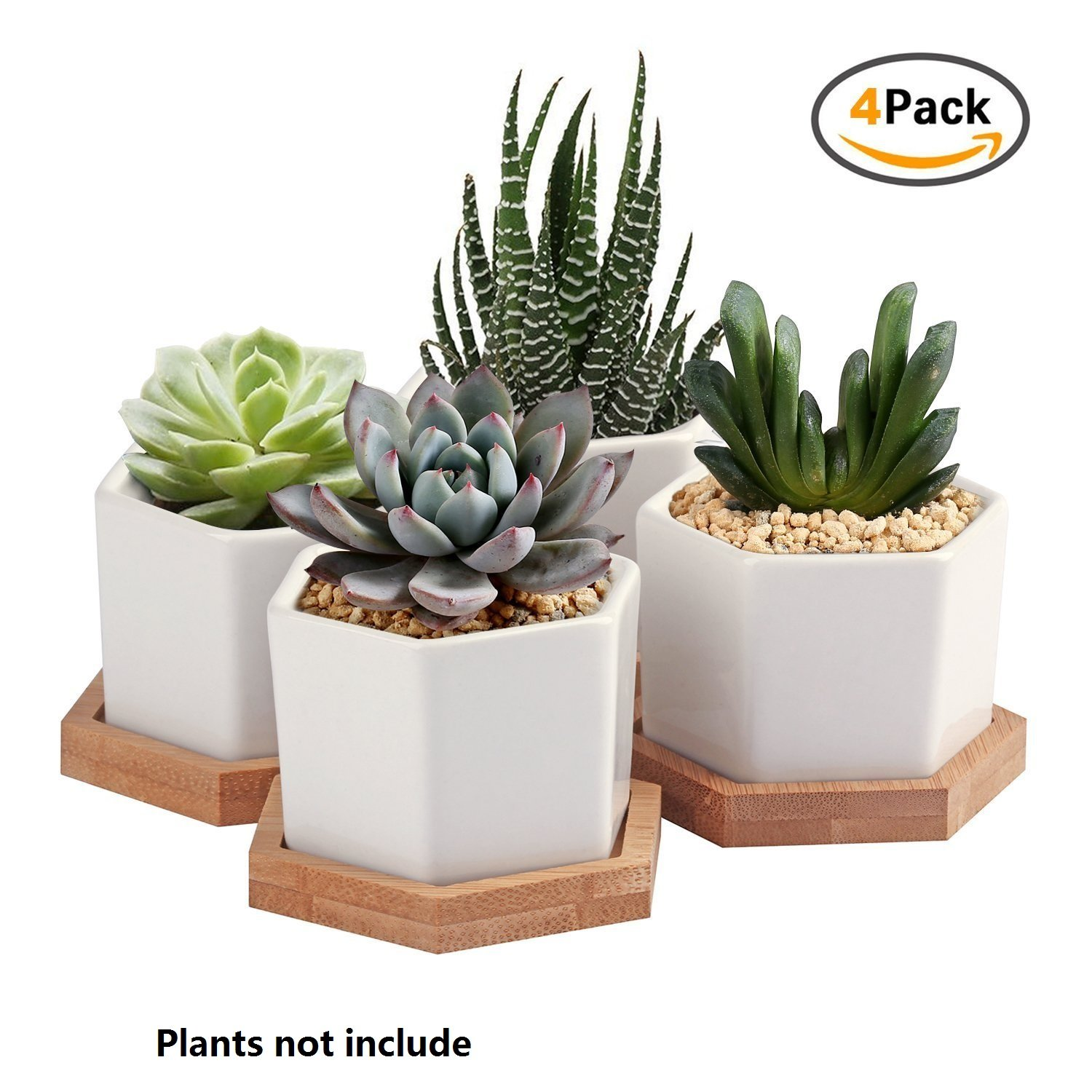 Succulent Plant Pots,Oamceg 2.75 Inch Succulent Plant Pots,Set Of 4 White Ceramic Succulent Cactus Planter Pots With Bamboo Tray by Oamceg