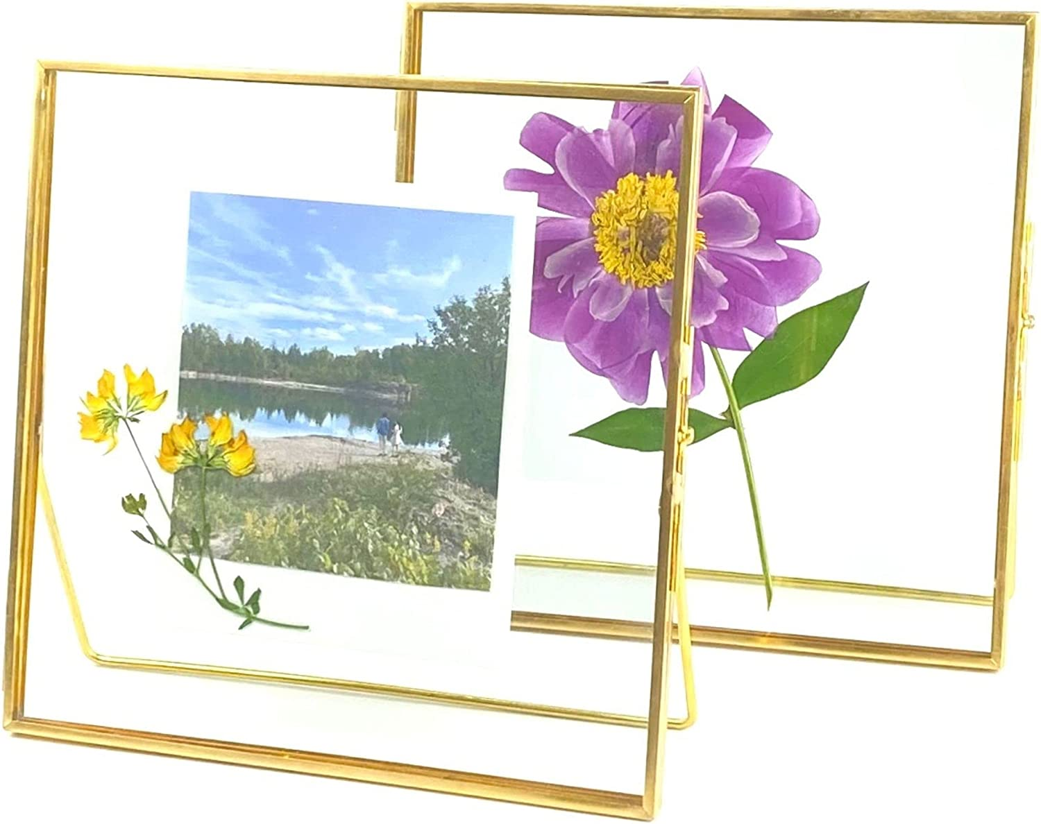 Glass Frame for Pressed Flowers, Leaf and Artwork - Gold 6x6 Standing Square Metal Picture Frames, Tabletop Clear Double Glass Floating Frame, Home Decor Photo Display, Set of 2 Flower Press Frames