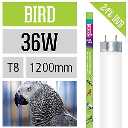 Arcadia T8 Bird Lamp/Vogel Leuchtstoffröhren