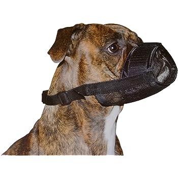 Dog Head Collar To Stop Barking Reviews