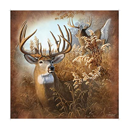 Marco Intl Rustic Deer Shower Curtain